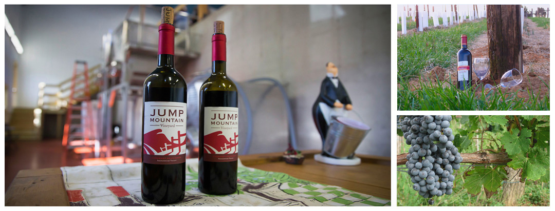 Jump Mountain Wines